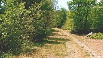 Land in Magnolia